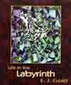 Life in the Labyrinth, E.J. Gold